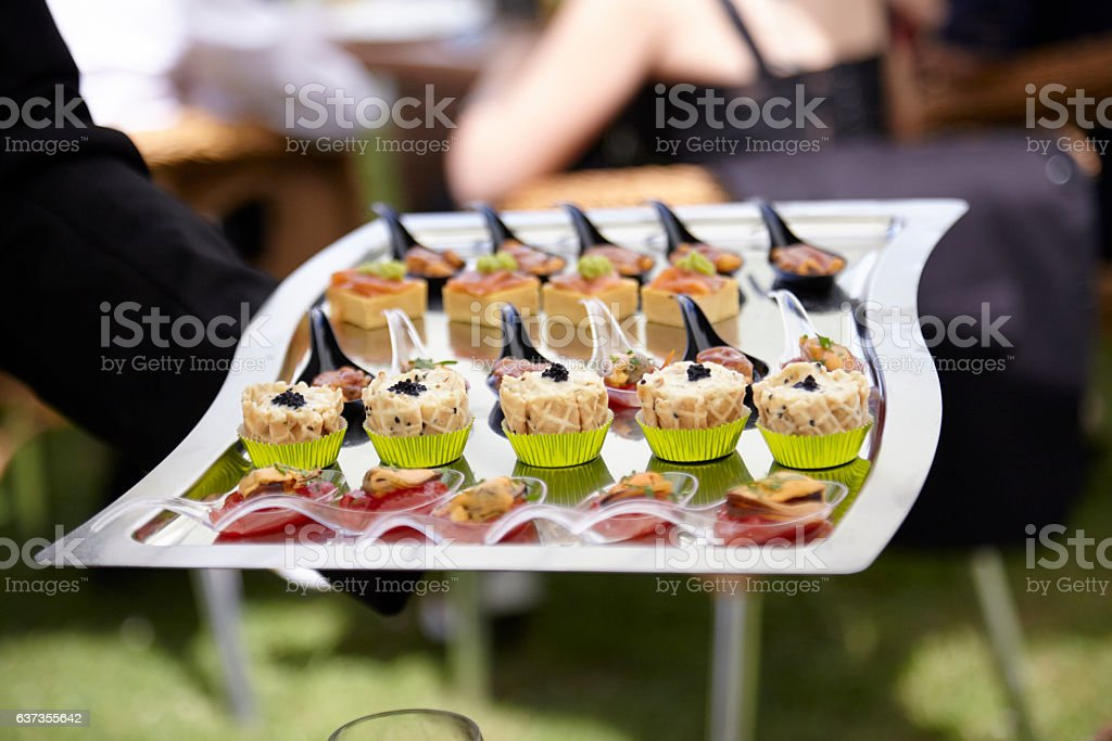 Waiter Serving Appetizers in an Outdoors Party (Haute Cuisine) stock photo