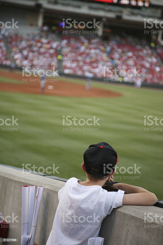 Waiting for a flyball stock photo