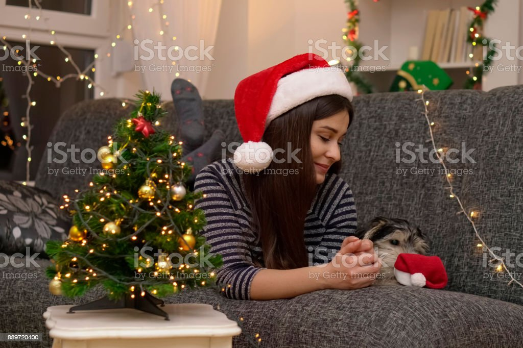 Waiting for Christmas stock photo