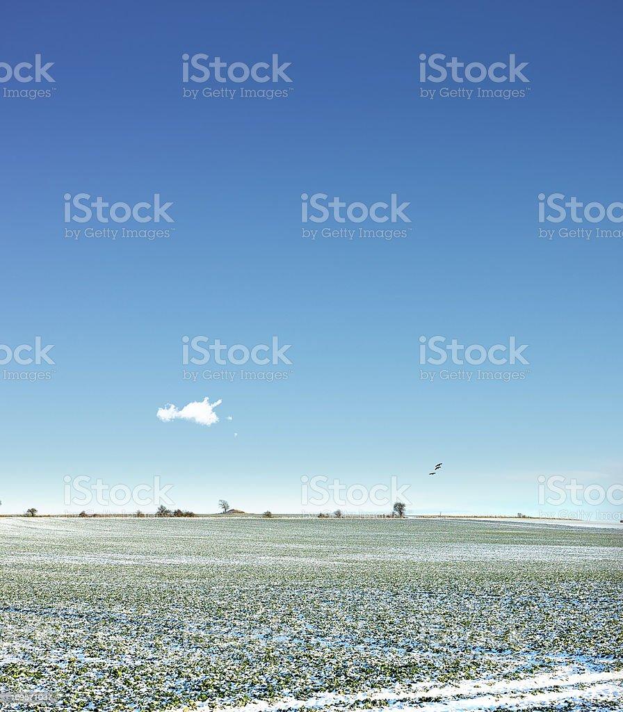 Bereit für den Frühling Lizenzfreies stock-foto
