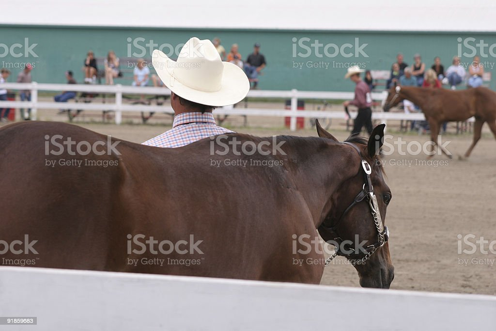 Waiting for the judges' results royalty-free stock photo