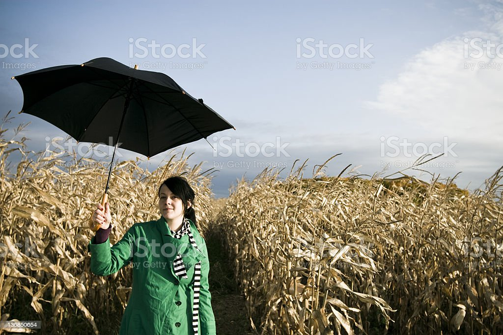 Waiting for the rain royalty-free stock photo