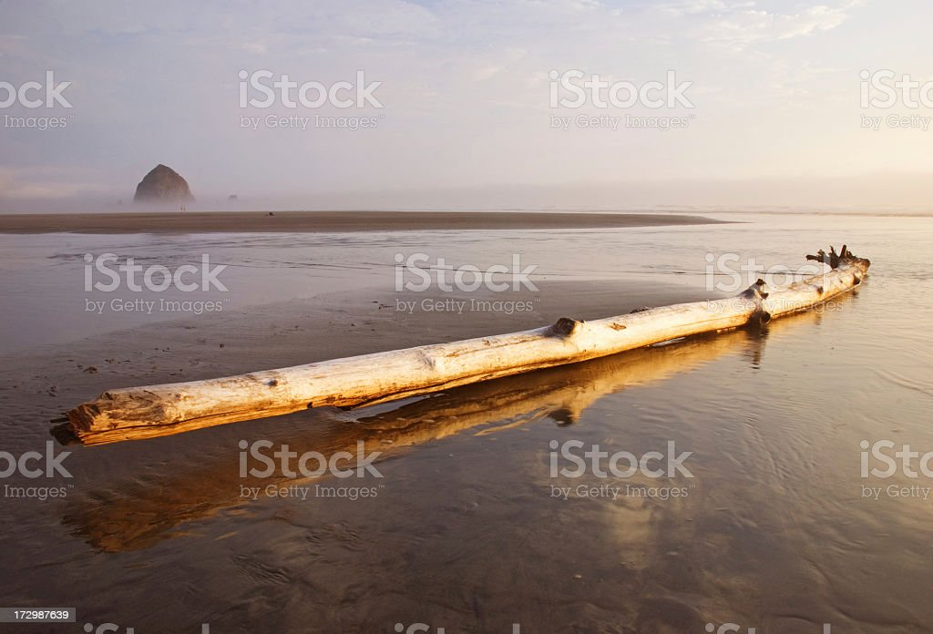 Waiting for tides royalty-free stock photo