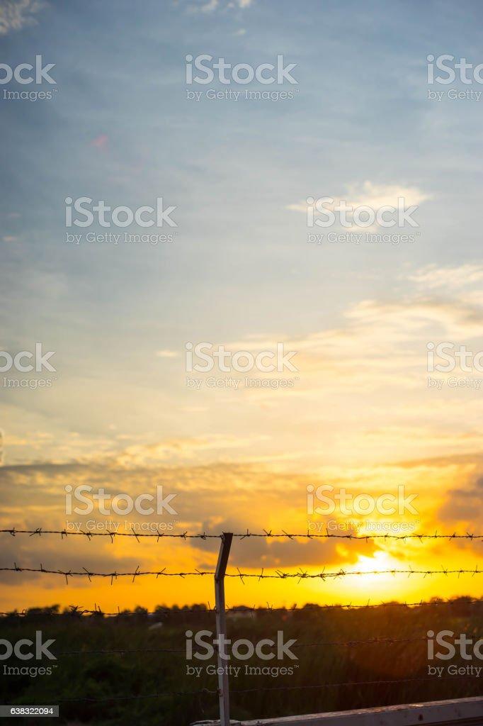 Waiting freedom stock photo