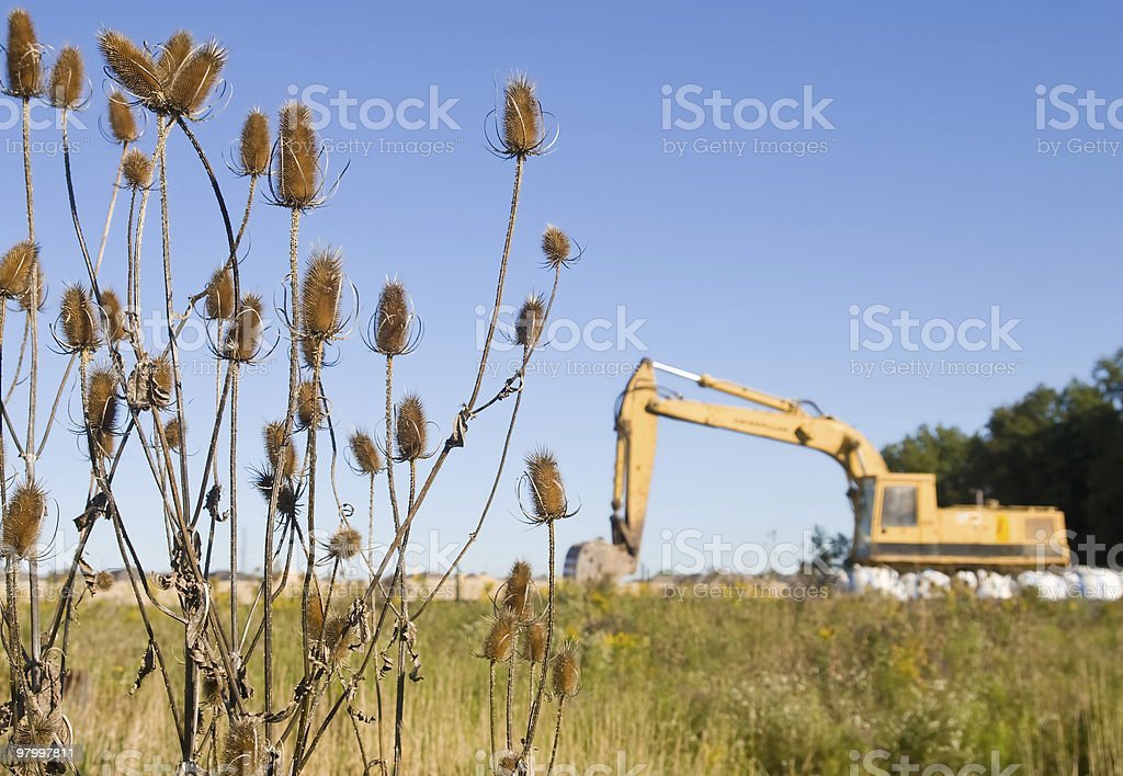 Waiting to invade royalty-free stock photo