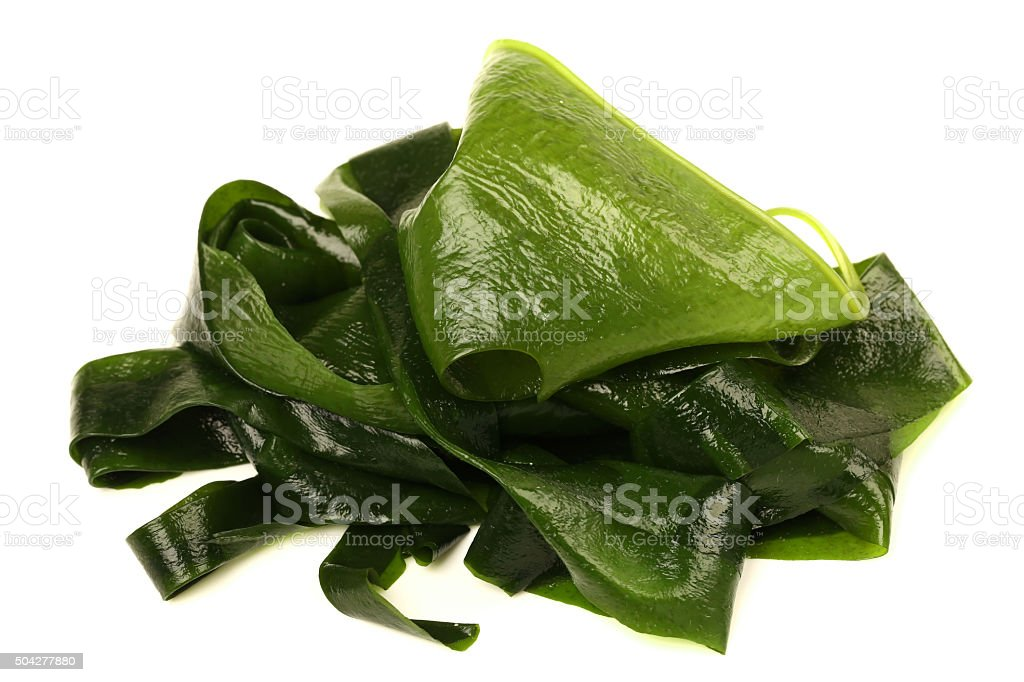 wakame stock photo