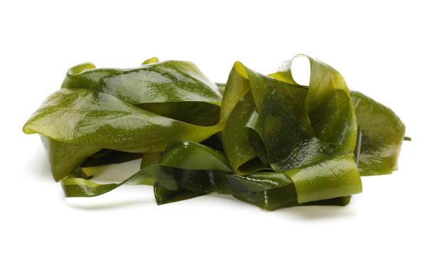 alga wakame en el fondo blanco - algas fondo blanco fotografías e imágenes de stock