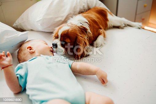 942206906 istock photo wake up little human i wanna play 1059601690