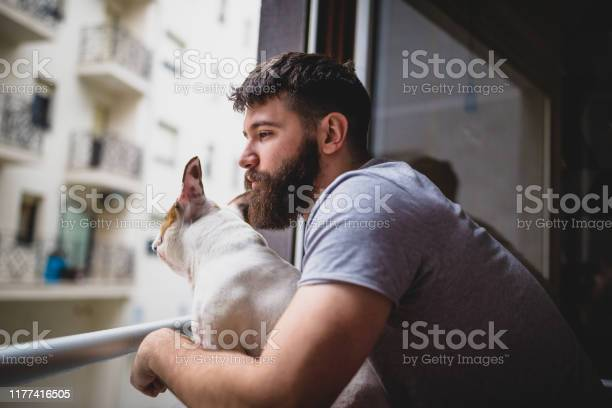Waking up with his dog looking through the window picture id1177416505?b=1&k=6&m=1177416505&s=612x612&h=58 aoikgvobfexrfh3d8apoxlqsccvs84s7 ww3asz4=