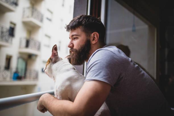 Mit seinem Hund aufwachen, durch das Fenster schauen – Foto