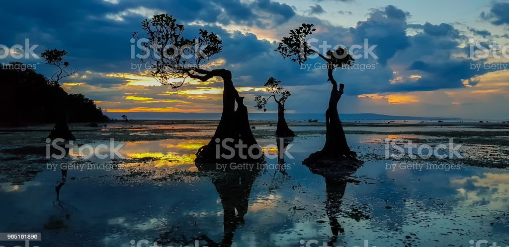 Walakiri Beach, Sumba royalty-free stock photo