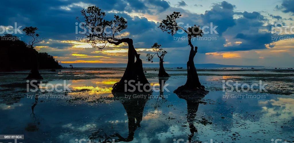 Walakiri Beach, Sumba zbiór zdjęć royalty-free