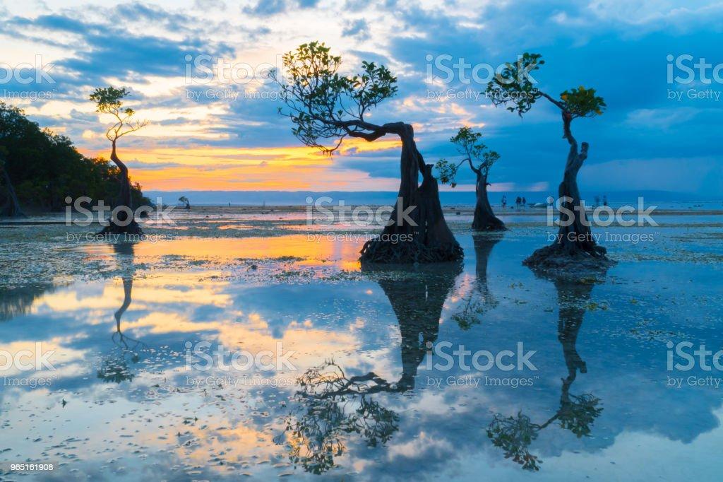 Walakiri Beach, Sumba royalty-free stock photo
