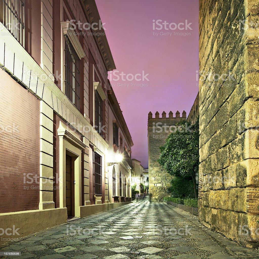 Walk at dusk royalty-free stock photo