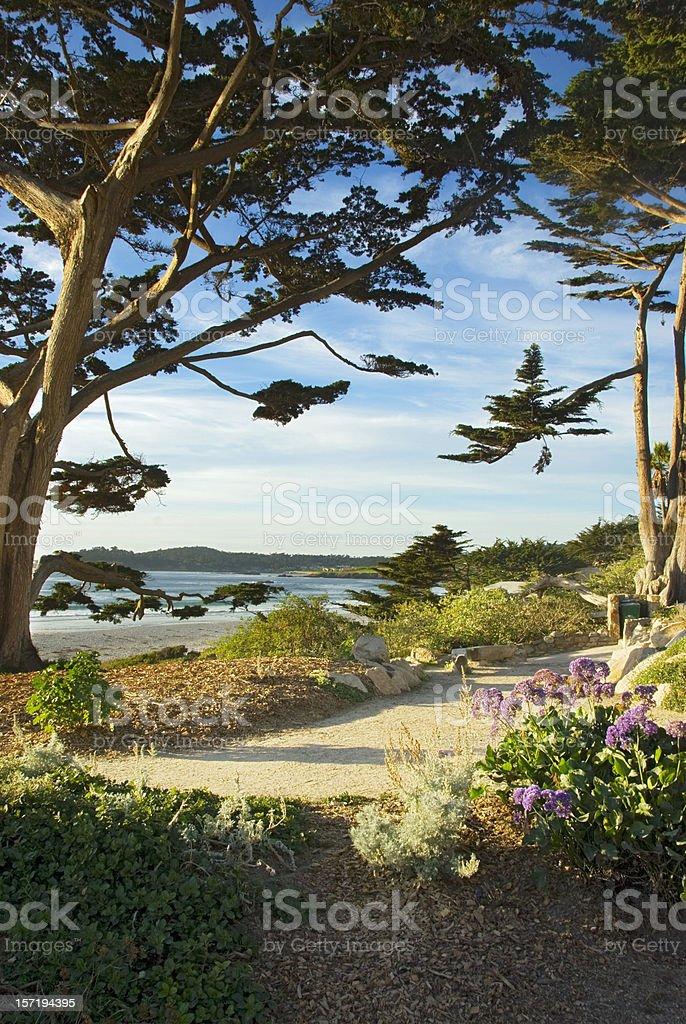 Walk by the Sea Carmel California stock photo