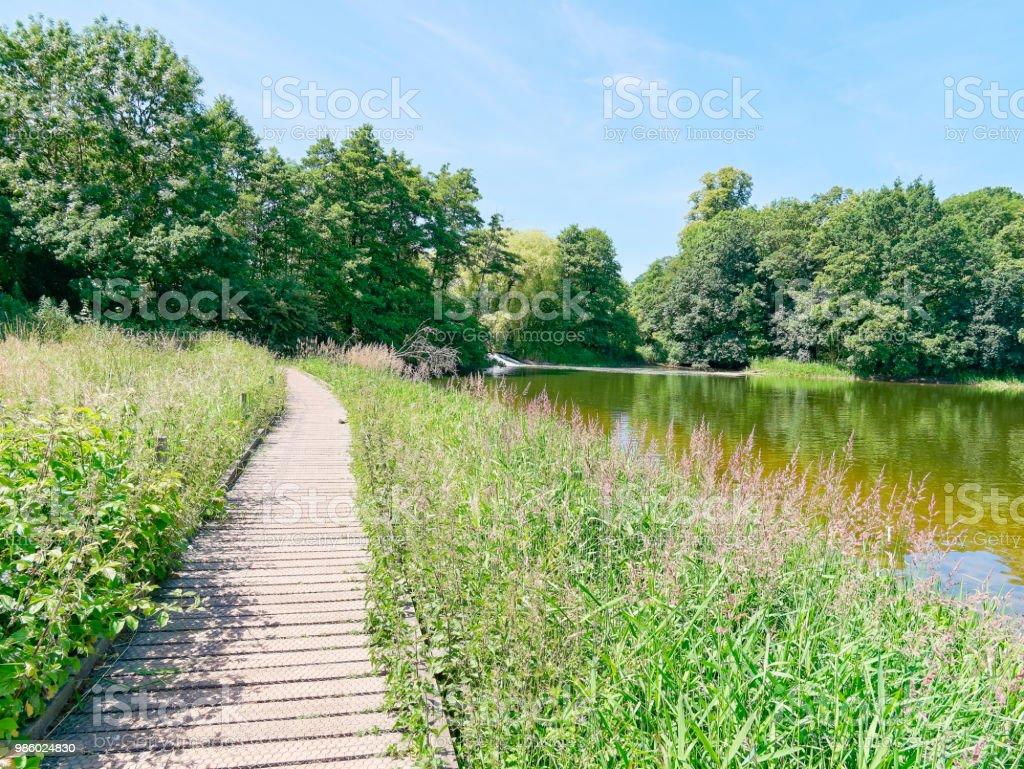Walk by the waterside stock photo