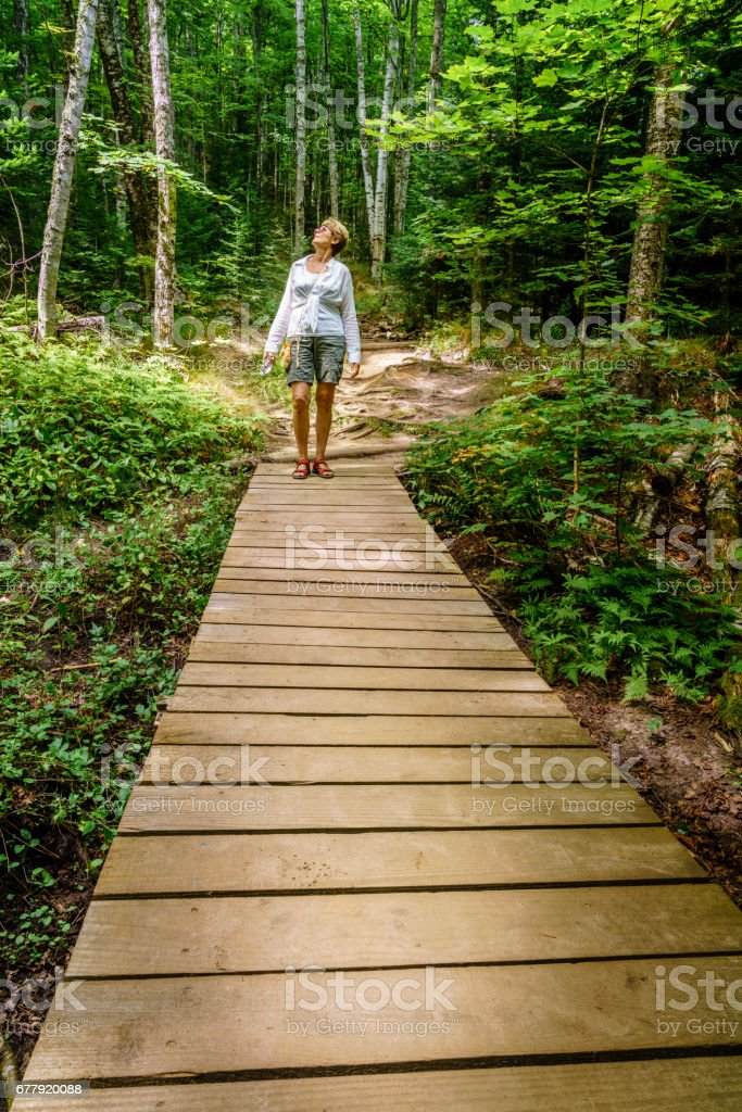 Walk in the park royalty-free stock photo