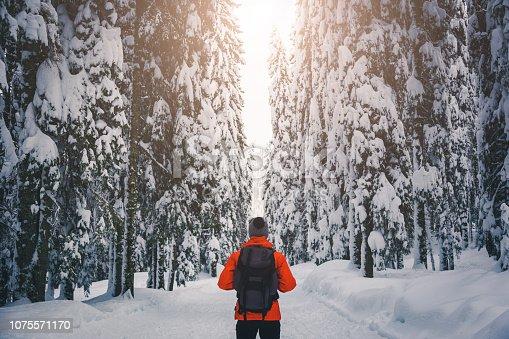 istock Walk in winter forest 1075571170