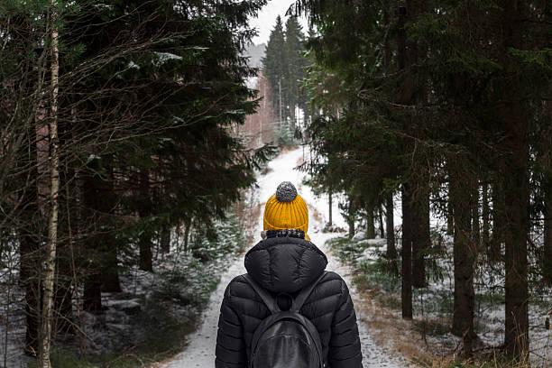 walk in winter forest - baumgruppe stock-fotos und bilder