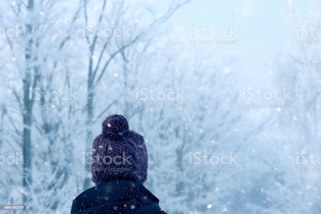 Walk in winter snowfall royalty-free stock photo