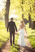 Bride and bridegroom holding hands and walking through the nature on the sunny spring day