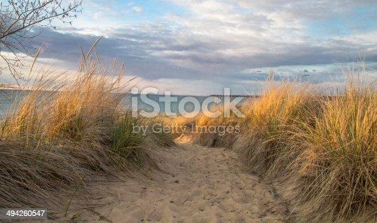 832047798istockphoto Walk On The Beach 494260547