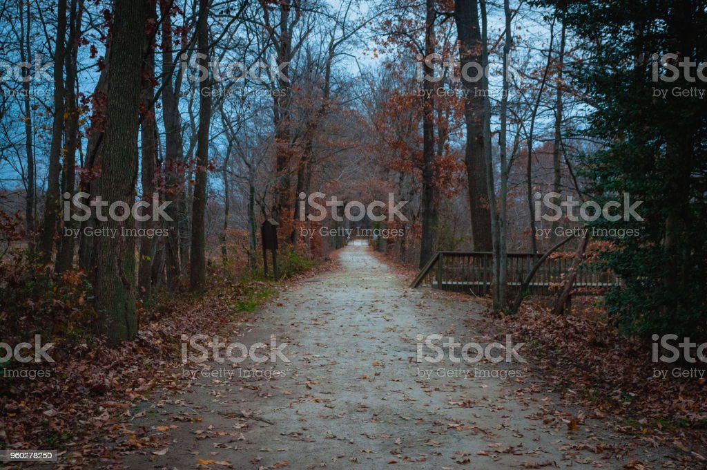Walk This Path With Me #6 stock photo