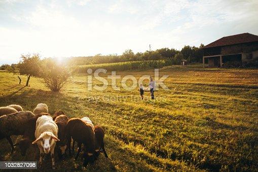 Mother and son enjoying in a walk through the farm