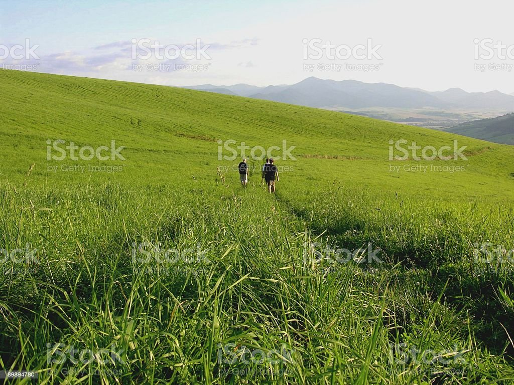 walk through the fields royalty-free stock photo