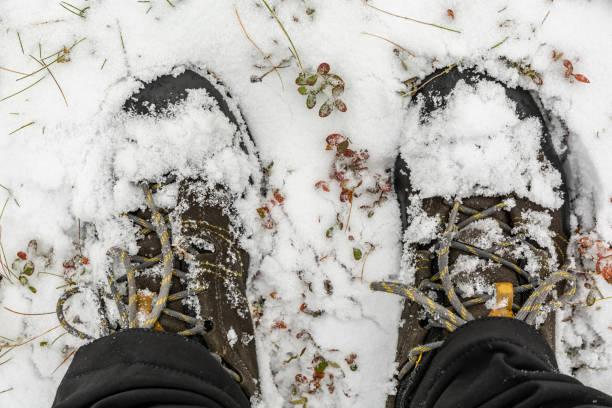 Taze kar yağışı nda bir yürüyüş. Karda ayakkabılara yaklaşın. stok fotoğrafı
