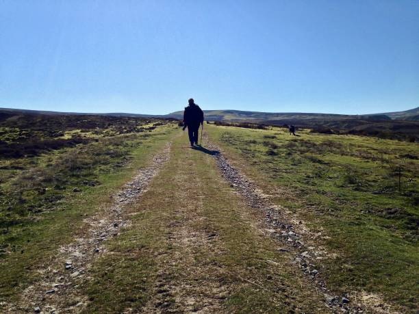 a walk to the western horizon - mcdermp stock photos and pictures