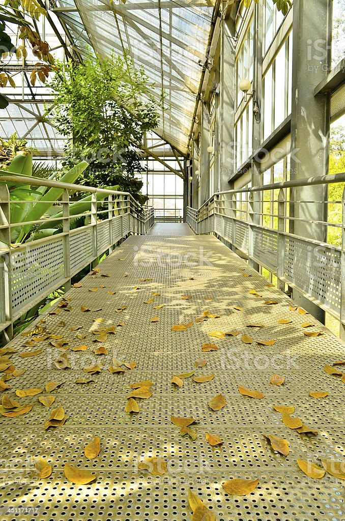walk way Botanical Garden Pavilion royalty-free stock photo