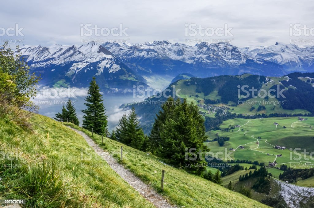walk way on the mountain with tree, green grass and alp with snow in the background – Foto