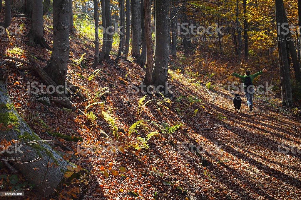 Spaziergang mit einem Freund – Foto