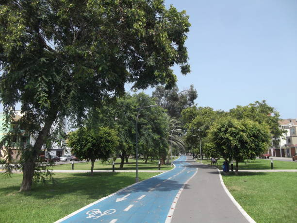Walk with Trees La foto muestra un paseo peatonal con ciclovía en una mañana soleada de verano. alameda california stock pictures, royalty-free photos & images