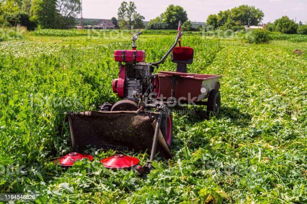 Walkbehind tractor with disc plates grass cutter grass mowing process picture id1194546826?b=1&k=6&m=1194546826&s=612x612&h=i4rc7d z4n9c0qtehrfjf0z5jdbxzztf2jwm2daxlla=