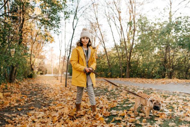 Walking a dog picture id822194734?b=1&k=6&m=822194734&s=612x612&w=0&h=k yzkgtdmlwvbr1q5xp8 nl1uv22np8vubvymnxfevy=