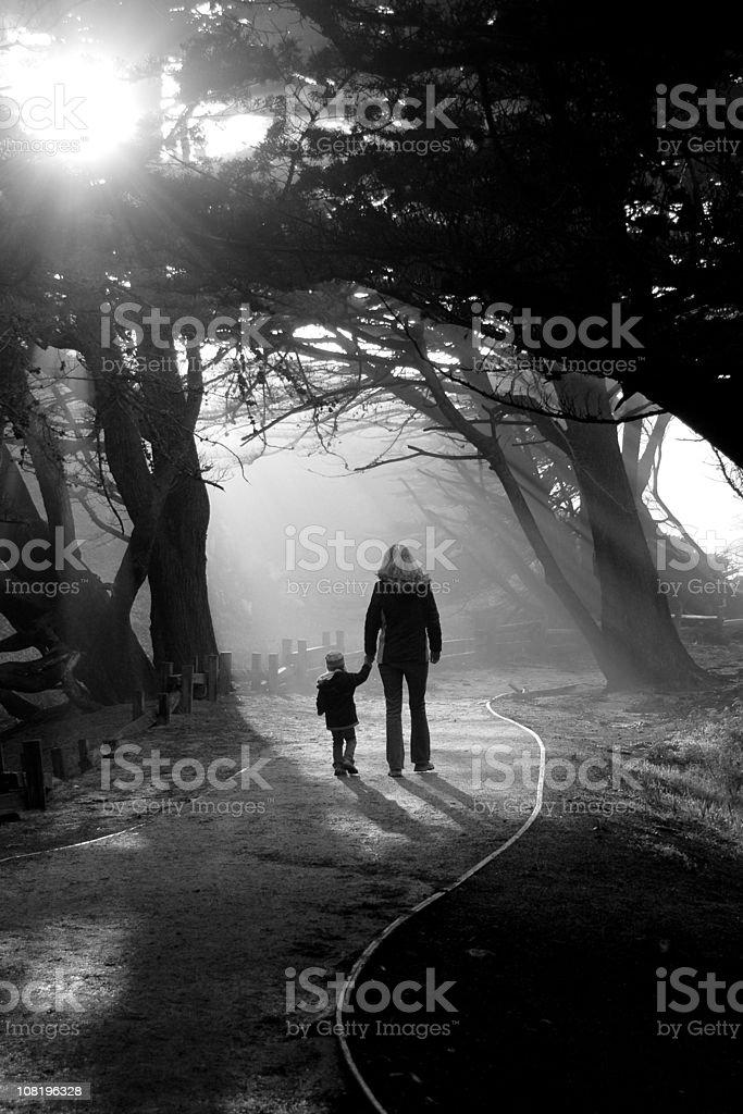 walking a path stock photo