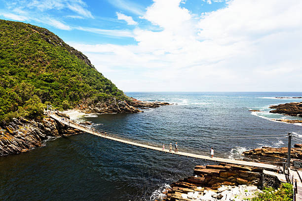 walking across the pedestrian suspension bridge at storms river mouth - nature reserve stock photos and pictures