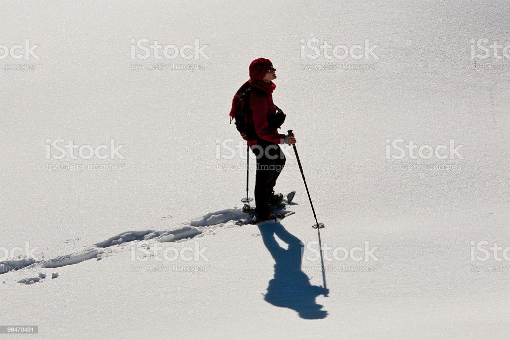 Walking Alone in the Snow, Monte Baldo royalty-free stock photo
