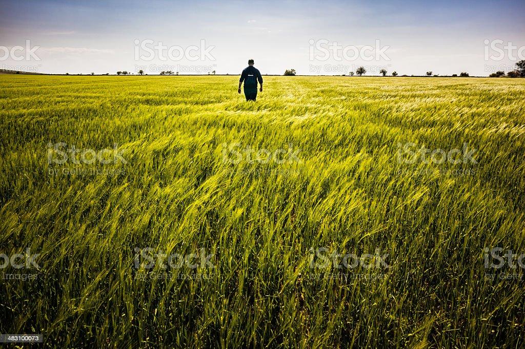 Walking alone stock photo