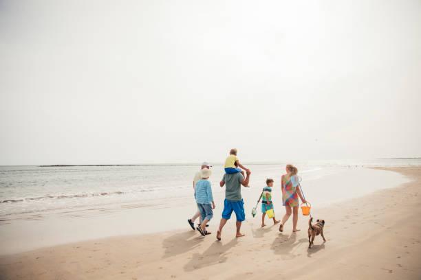 Walking along the beach picture id932373476?b=1&k=6&m=932373476&s=612x612&w=0&h=ro7tiqmujfj0go8aa93dx2uq haghrtlvkk3miono5o=