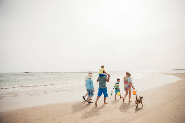 walking along the beach - family vacation stock photos and pictures