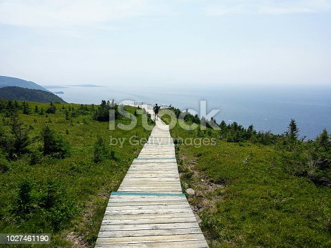 Walking along the skyline trail on Cape Breton Island, Nova Scotia, with the vast Atlanic Ocean in the background