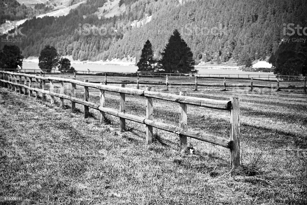 Walking around Sils Lake - Switzerland - Europe stock photo
