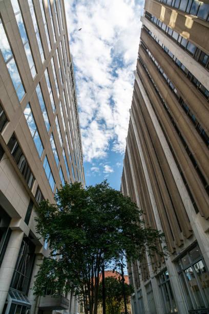 Walking between two buildings stock photo