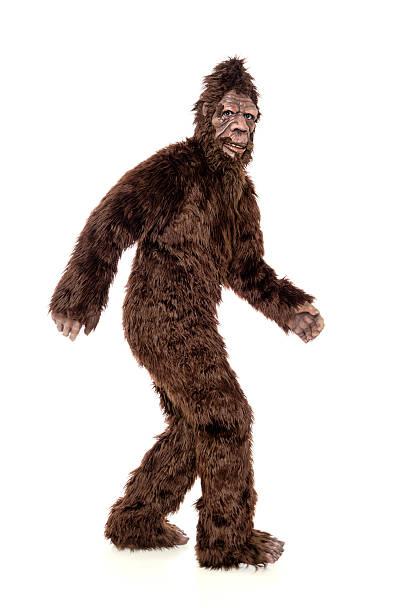 Walking bigfoot picture id503563371?b=1&k=6&m=503563371&s=612x612&w=0&h=vbmxeauq9f3nxnhxdc1kxu6tbvf j7b0hpkao5jn 38=