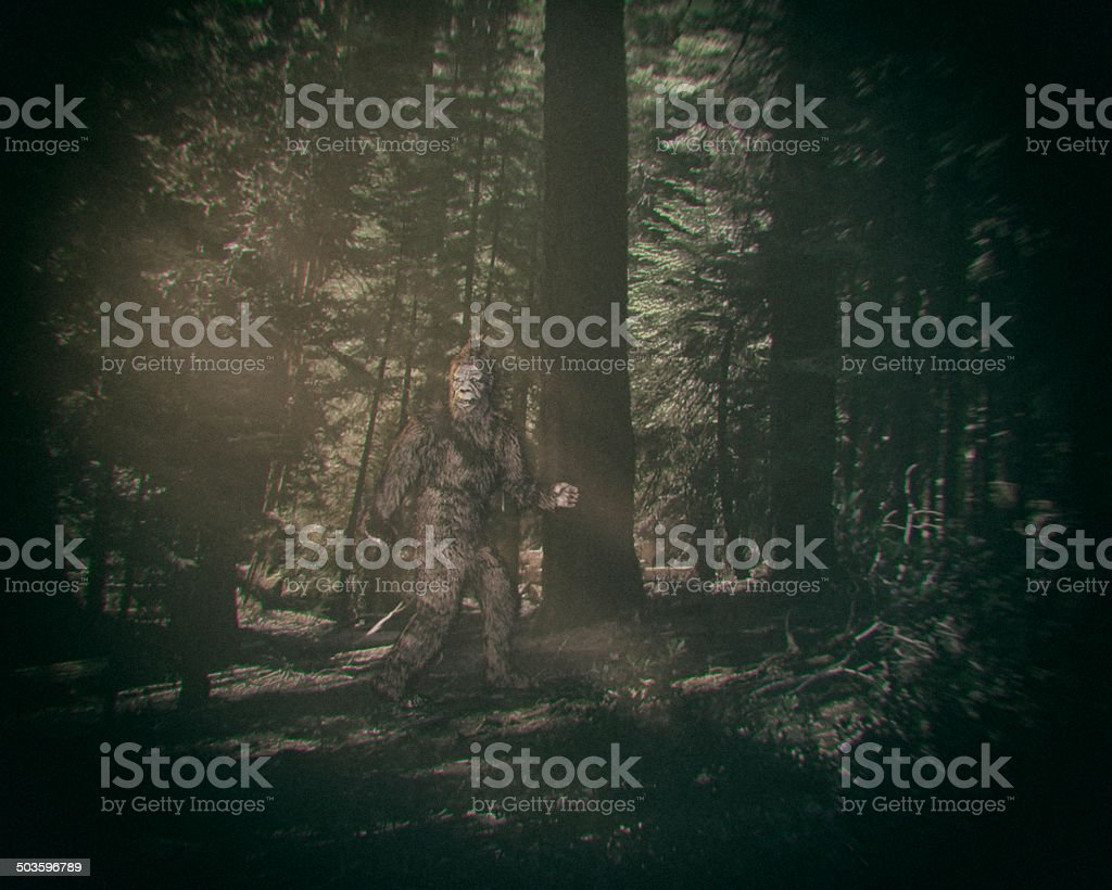 Walking Bigfoot royalty-free stock photo