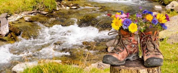 Wanderstiefel mit schönen Blumen auf Trekkingtour – Foto
