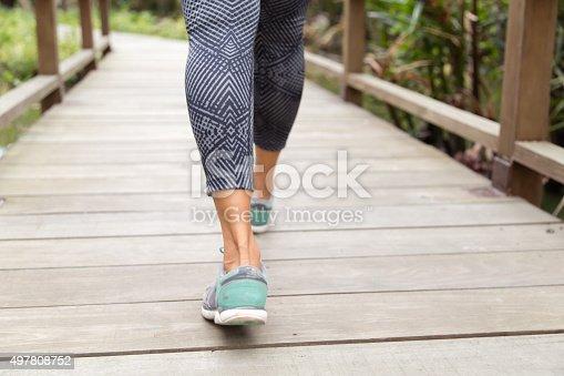 istock Walking Bridge 497808752